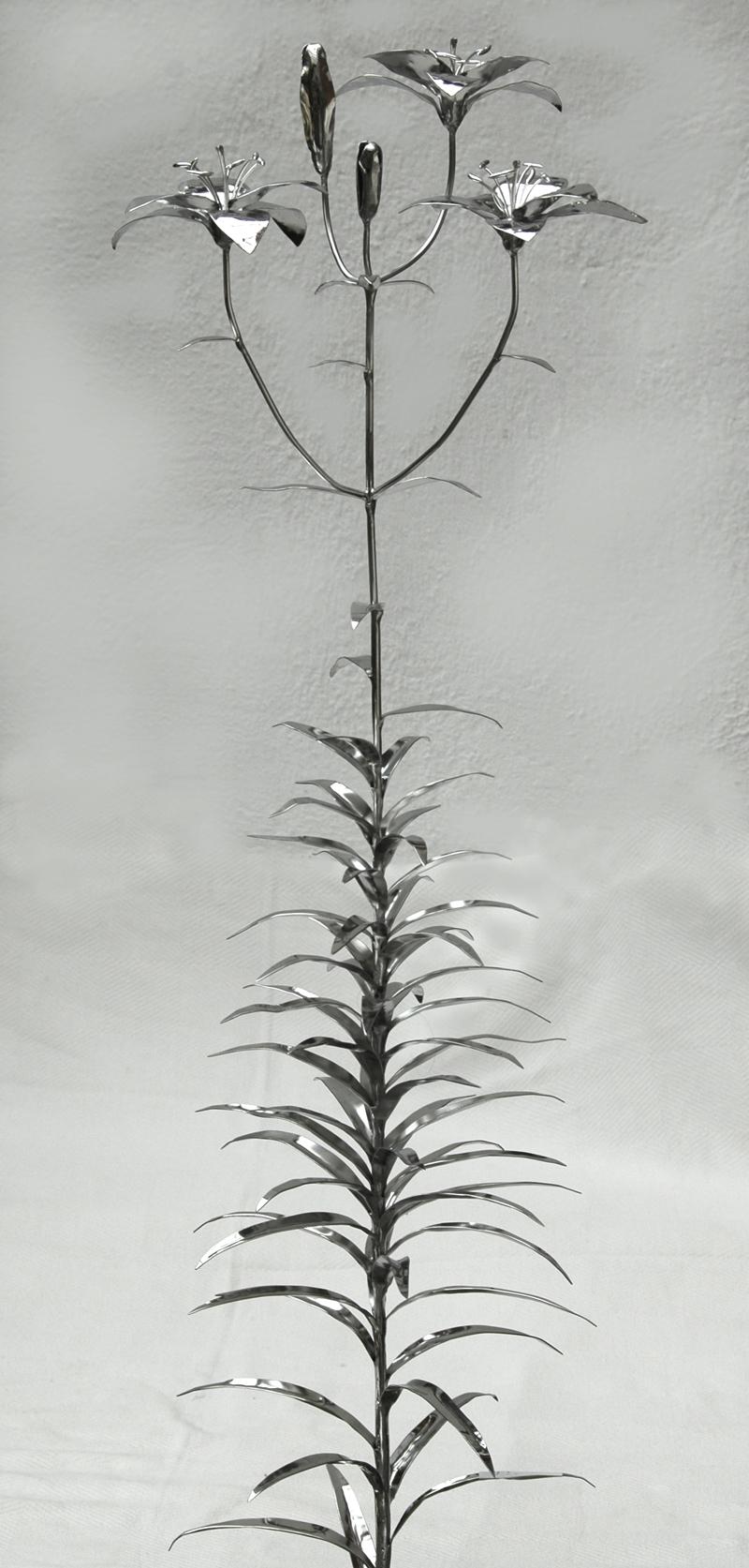 Lilien (2)