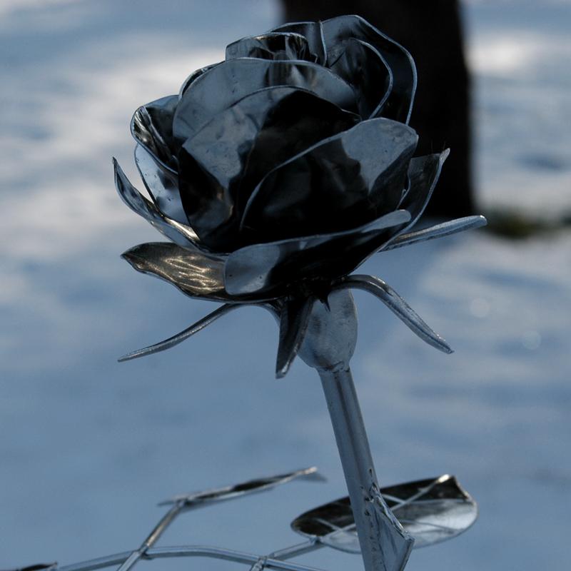 Rose_12 (6)