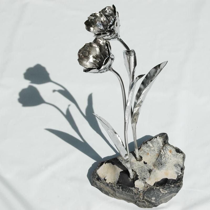 Tulpen (12)