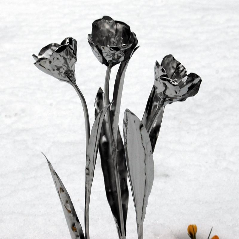 Tulpen (9)